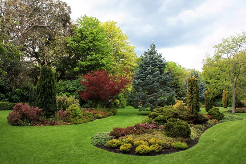 Arboles arbustos imagui for Arboles para jardin