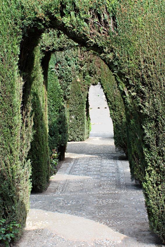 Setos en los jardines bajos o nuevos generalife granada - Setos de jardin ...