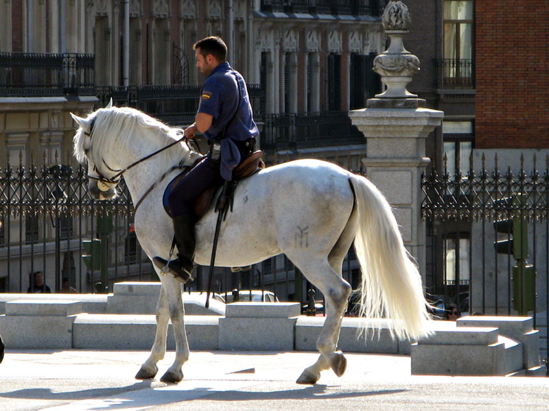 Policía nacional a caballo en el Retiro